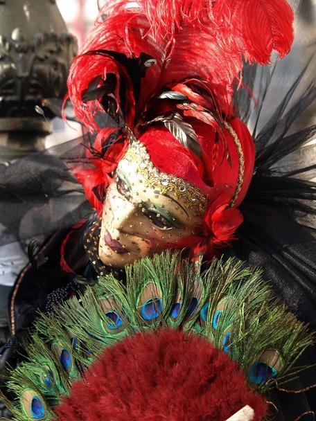 前へ 次へ 出典  ヴェネツィアのカーニバルの写真、画像集【仮装・仮面舞踏会】